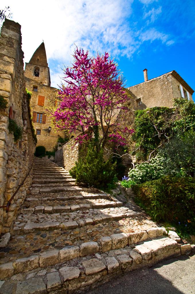 Frankreich - Provence - Crestet